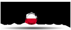 Witamy w Polsce! Logo
